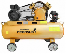 Máy nén khí PEGASUS TM- V-0.25/12.5 -180L