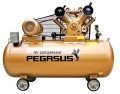 Máy nén khí PEGASUS TM- V-0.12/8