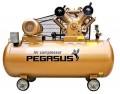 Máy nén khí PEGASUS TM-V-0.25/8-100L